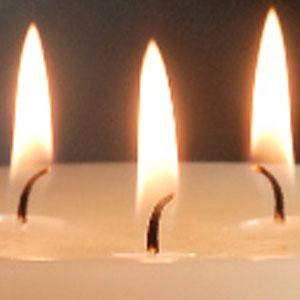 Bolsius mammoet kaarsen