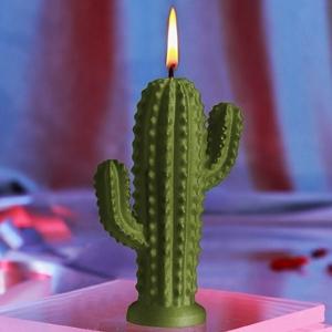 Cactus kaars