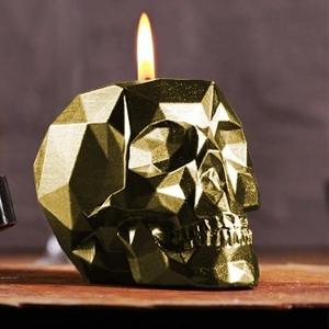 Skull - Schedel