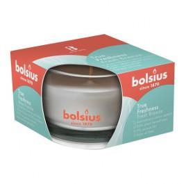 Bolsius geurglas frisse bries - fresh breeze geurkaarsen 50/80 (13 uur) True Freshness