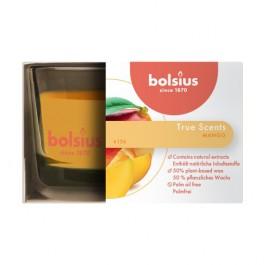 Bolsius geurglas mango geurkaars 50/80