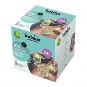 100 stuks Bolsius relight kaars in paars kunststof kaarsenhouder, voordeel verpakking