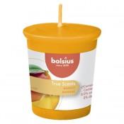 Bolsius votive mango geurkaars 53/45 (15 uur)
