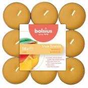 Bolsius mango geurtheelichtjes 18 stuks