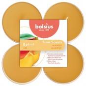 Bolsius mango - mango maxi geurtheelichtjes 8 stuks