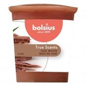 Bolsius votive oud hout - old wood geurkaars 53/45 (15 uur)