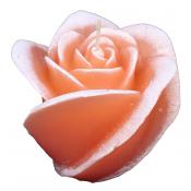 Zalm roze roos figuurkaars met mango papaja geur